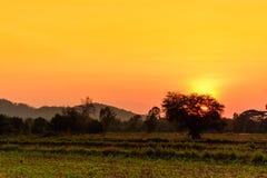 Landschaft am Abend stockfotografie