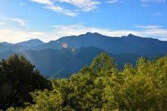 Landschaft in Alishan Taiwan Stockfotografie