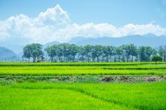 Landschaft Ambasamudram, Tamil Nadu Lizenzfreie Stockfotografie