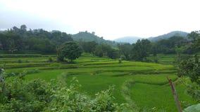 Landschaft - Araku lizenzfreies stockbild