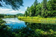 Landschaft auf dem Fluss Stockbild