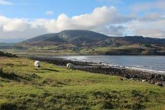 Landschaft auf Insel von Skye Lizenzfreie Stockfotos