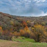 Landschaft auf Sommerweide Demerdzhi, Krimhalbinsel Lizenzfreie Stockfotos