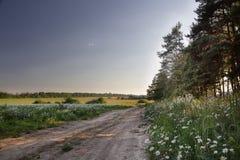 Landschaft aufgestellt nahe Moskau Stockfotografie