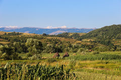 Landschaft in Banat, Rumänien Lizenzfreies Stockbild