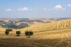 Landschaft in Basilicata (Italien) Lizenzfreie Stockfotografie