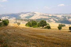 Landschaft in Basilicata (Italien) Stockfotografie