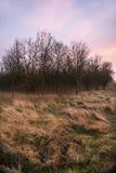 Landschaft bei Sonnenaufgang Lizenzfreie Stockbilder