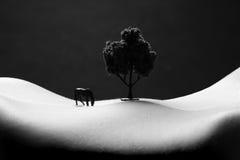 Landschaft-Bodyscape-Bild einer Frau Stockbild