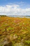 Landschaft in Bretagne Lizenzfreie Stockbilder