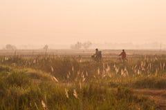 Landschaft Chaiyaphum in Thailand Lizenzfreies Stockbild