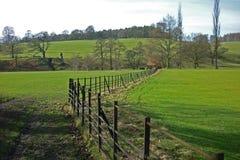 Landschaft, Chatsworth-Park, Baslow, Höchstbezirk, Derbyshire, Lizenzfreie Stockfotografie