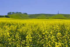 Landschaft Cherhill Wiltshire Stockbild