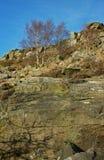 Landschaft, Curbar-Rand, Höchstbezirk, Derbyshire Stockfotografie