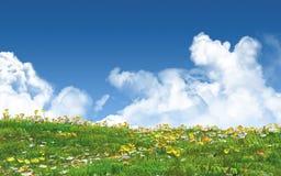 Landschaft 3D mit Butterblumeen und Gänseblümchen Stockbild
