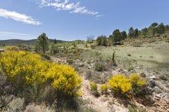Landschaft in De Arriba Cañadas de Haches Stockbilder