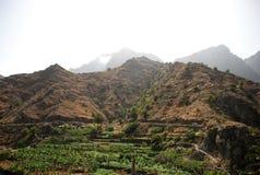 Landschaft in den Kanarischen Inseln Lizenzfreie Stockfotos