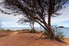 Landschaft der Baum- und Seeküstenlinie Lizenzfreies Stockbild