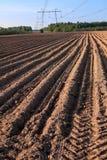 Landschaft der Landschaft, der Ernten und des gepflogenen Landes, Abschluss herauf Ansicht an der Braunerde Lizenzfreies Stockfoto
