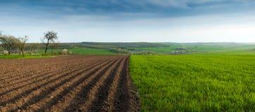 Landschaft der gepflogenen Zeit des Gartens im Frühjahr landwirtschaftliche szenische Ansicht mit Gartenbetten stockfotografie