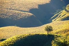 Landschaft der grünen Wiese am Fuß eines Berges stockfotos