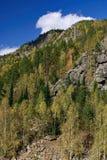 Landschaft in der Herbstzeit. stockfoto