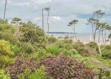 Landschaft in der Küste von Uruguay stockbilder