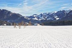 Landschaft der Landschaft in der schneebedeckten Schweiz im Winter Lizenzfreie Stockfotografie