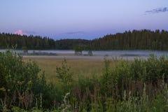 Landschaft in der nebeligen Nacht im Sommer Stockfotografie