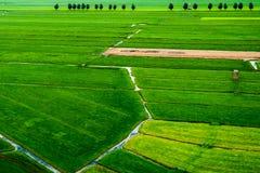 Landschaft der Niederlande Lizenzfreies Stockfoto