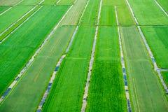Landschaft der Niederlande Lizenzfreie Stockbilder