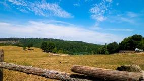 Landschaft der Ranch in Wiezyca-Region, Kashubia, Polen lizenzfreie stockfotografie