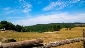 Landschaft der Ranch in Wiezyca-Region, Kashubia, Polen lizenzfreies stockbild