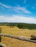 Landschaft der Ranch in Wiezyca-Region, Kashubia, Polen lizenzfreie stockfotos