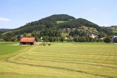 Landschaft in der Schweiz Lizenzfreies Stockfoto