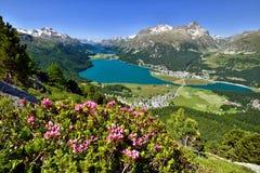 Landschaft in der Schweiz Stockbild