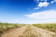 Landschaft der Straße mit Traktor ` s Bahn auf dem grünen Gebiet Stockfotos
