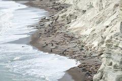 Landschaft in der Valdes-Halbinsel Stockfotos