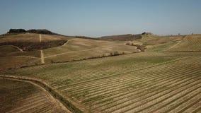 Landschaft der Weinberge von Toskana in Italien während der Frühlingszeit Der Weinweg stock footage