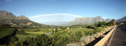 Landschaft der Weinkellereien Stockbilder