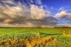 Landschaft der Wiese mit Regenbogen am Horizont Lizenzfreie Stockbilder