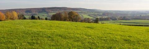 Landschaft der Wiese und der Hügel Stockbild