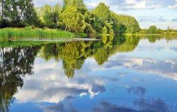 Landschaft der wilden Natur auf dem Teich Lizenzfreies Stockfoto