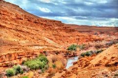 Landschaft des Asif Ounila-Tales in den hohen Atlas-Bergen, Marokko Lizenzfreie Stockfotografie