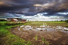 Landschaft des Bauernhauses am Abend Lizenzfreie Stockbilder
