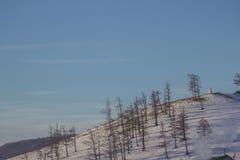 Landschaft des Berges in Khovsgol bei Mongolei bedeckte durch Schnee und Kiefer Lizenzfreie Stockbilder