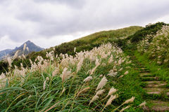 Landschaft des Berges in Taipeh Lizenzfreies Stockbild