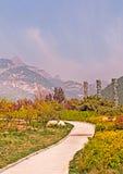 Landschaft des Bergs im Sommer lizenzfreies stockfoto