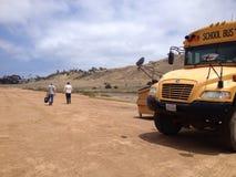 Landschaft des Catalina-Inselfeldes und des Schulbusses Lizenzfreies Stockfoto