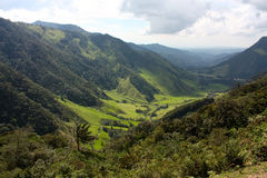 Landschaft des Cocora Tales, Kolumbien Stockbild